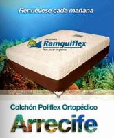 Portada Catálogo Ramguiflex